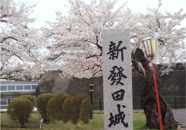 美しい桜の名城 新発田城